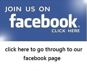 facebook-logo21